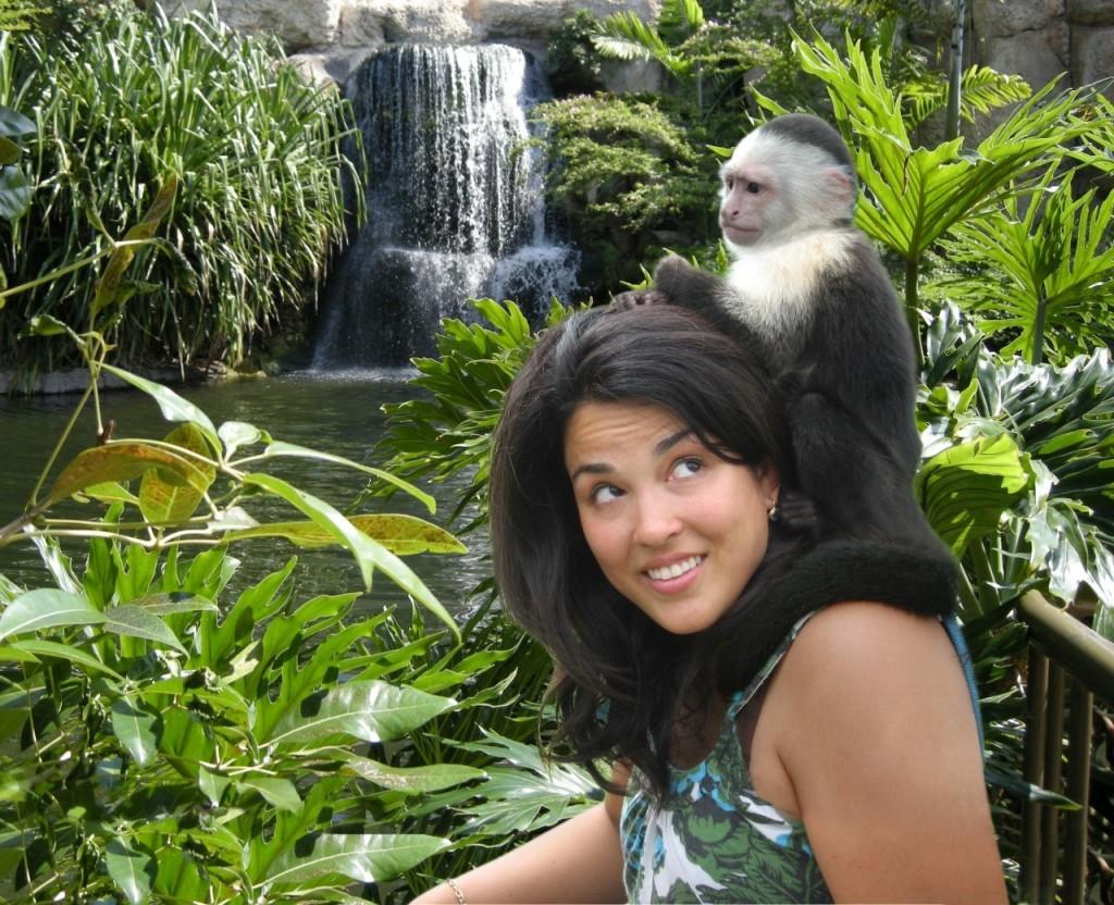 Ponto Miami O que fazer em Miami Jungle Island 1