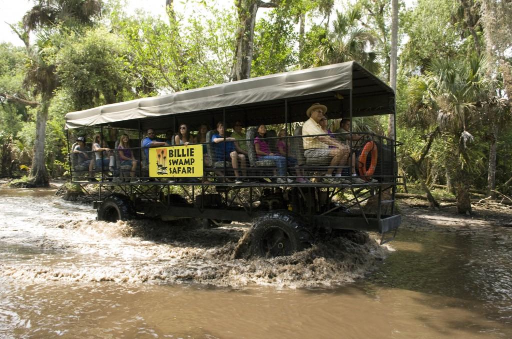 Ponto Miami O que fazer em Miami Billie Swamp Safari 2