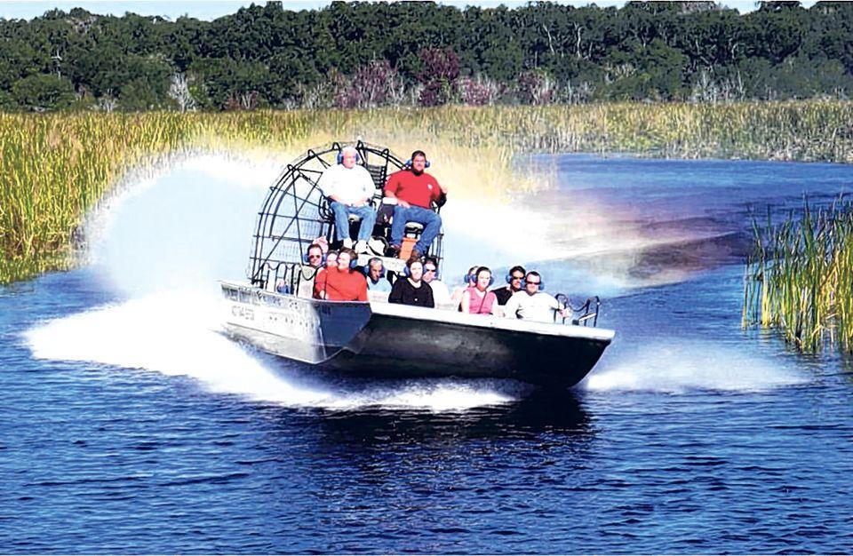 Ponto Miami O que fazer em Miami Billie Swamp Safari 4