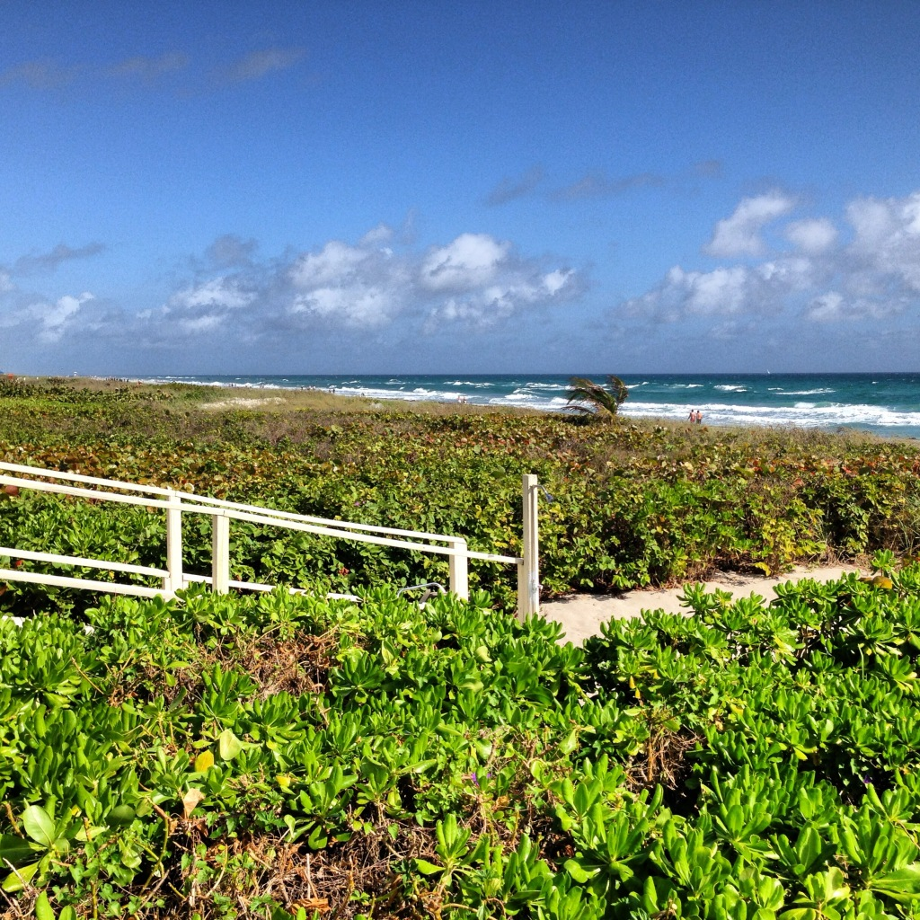 Ponto Miami O que fazer em Miami Delray Beach 4
