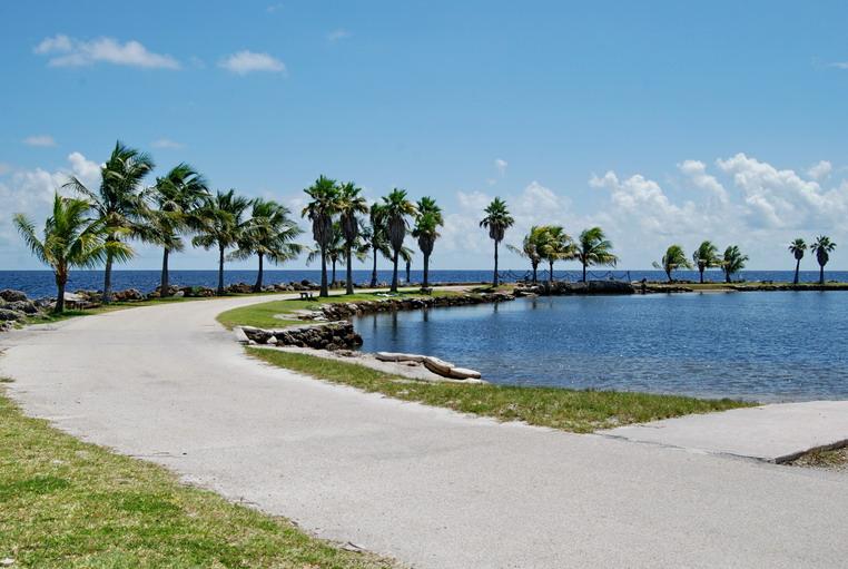 Ponto Miami O que fazer em Miami Dicas de Miami Matheson Hammock Park 3