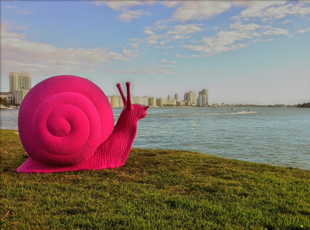 Ponto Miami O que fazer em Miami Art Basel 002