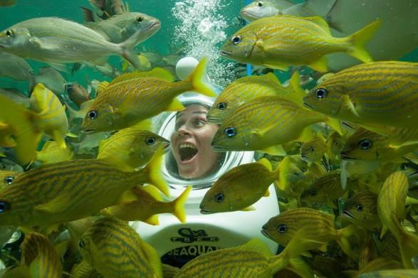 Ponto Miami O que fazer em Miami Seaquarium NEW 002