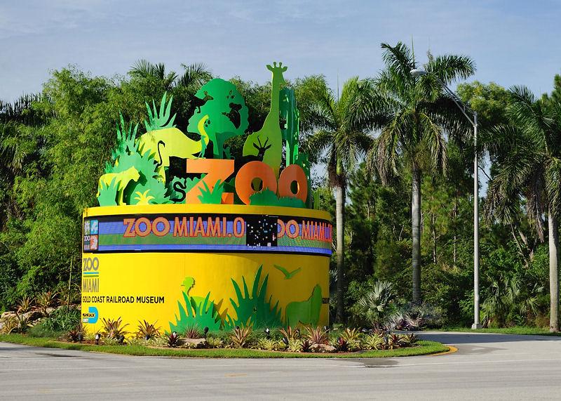 Ponto Miami O que fazer em Miami ZOO New 001