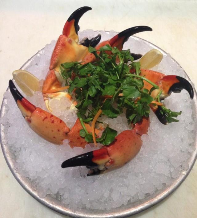 Ponto Miami Restaurantes em Fort Lauderdale Blue Moon Fish Company NEW 002