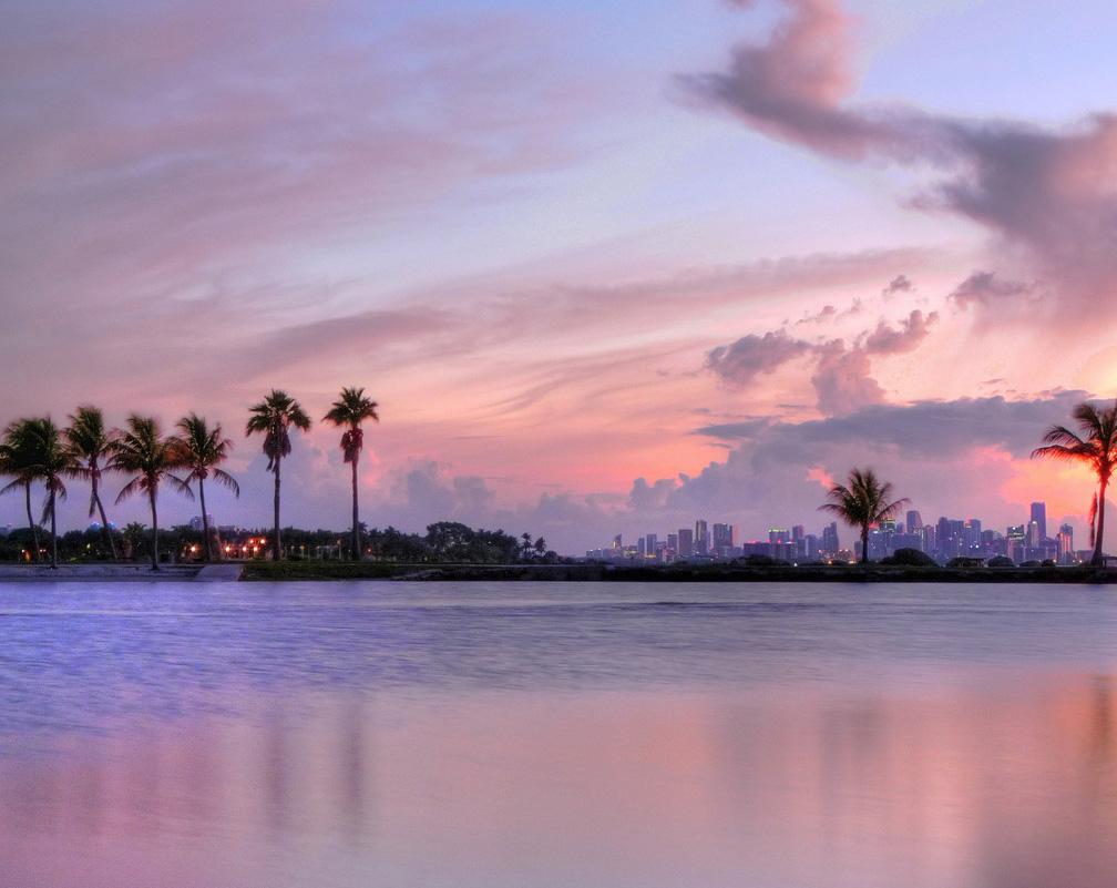 Ponto Miami O que fazer em Miami Dicas de Miami Matheson Hammock Park 1