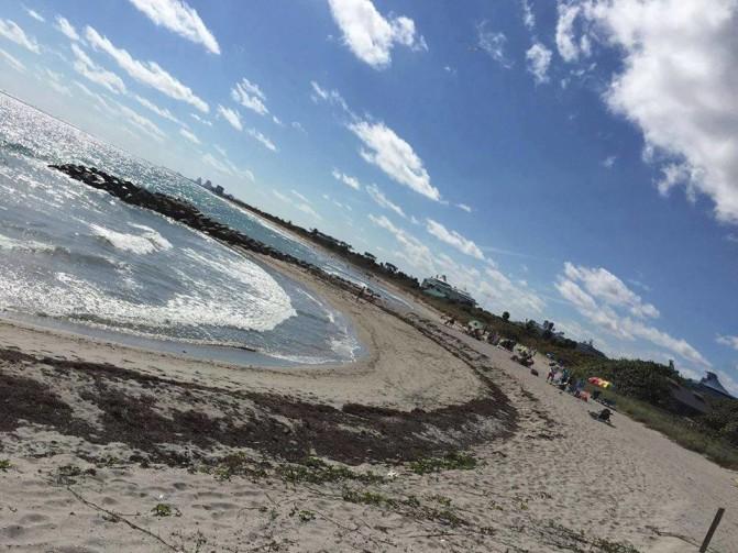 Ponto Miami O que fazer em Miami dicas de Miami JULBSP NEW 002