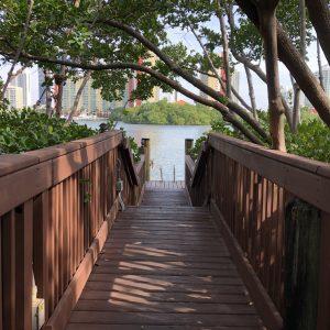 Qual o melhor mês para viajar para Miami?